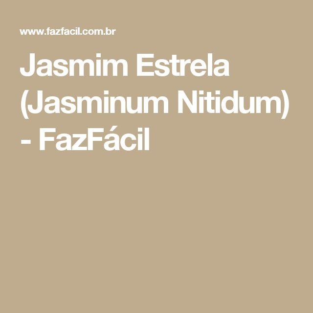 Jasmim Estrela (Jasminum Nitidum) - FazFácil