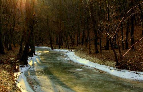 Dr. Pálffy István  A befagyott Gaja -patak Bármilyen hideg van, jól felöltőzve  nem kell félni egy kis sétától. A Gaja-patak völgye, évszaktól függetlenül szépséges...  Több kép Istvántól: www.facebook.com/palffydr/photos_albums