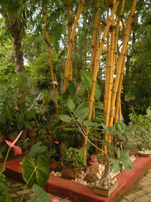Indian home garden ideas 30 rooftop garden design ideas for Indian home design with garden