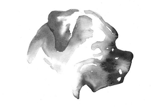 Boxer Dog Silhouette Watercolor