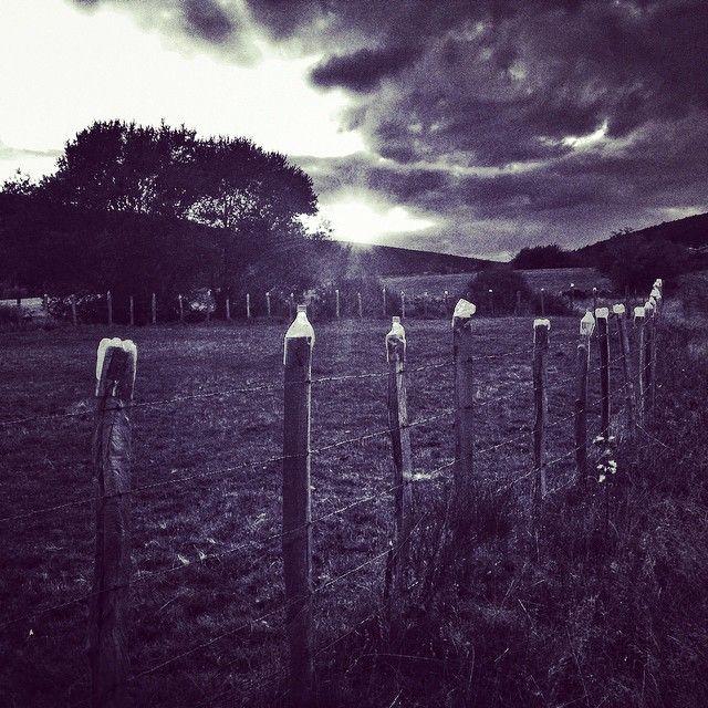 Cerra-miento  Segunda foto del reto de 5 fotos consecutivas en Blanco y Negro. Vuelvo a usar instagram como soporte y nomino a @sus_blanco para que acepte a su vez el reto.  #igersspain #salcedillo #vallas #campo #nubes #atardecer #sunset #igerspalencia #ByN