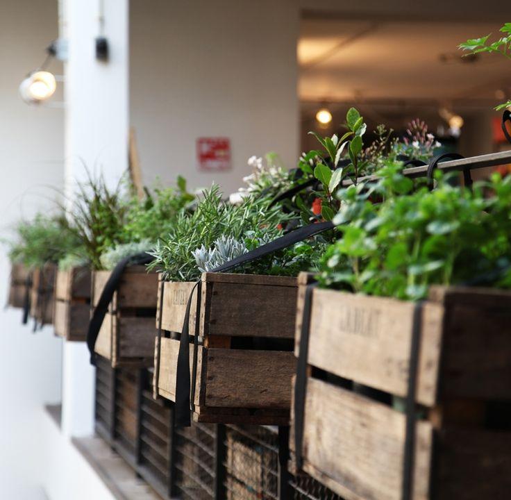 Jardinière en bois / Wooden planter