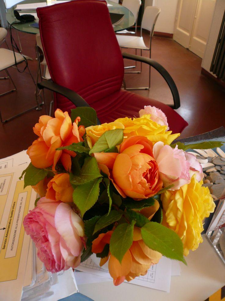 rose antiche in ufficio