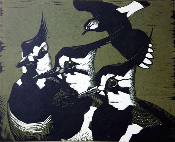 'Lapwings' linocut by Robert Gilmor.