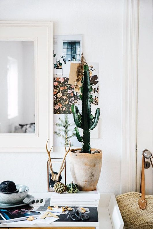 Create a stunning space with bright, white walls a natural decor elements like a potted cactus and bull head horns