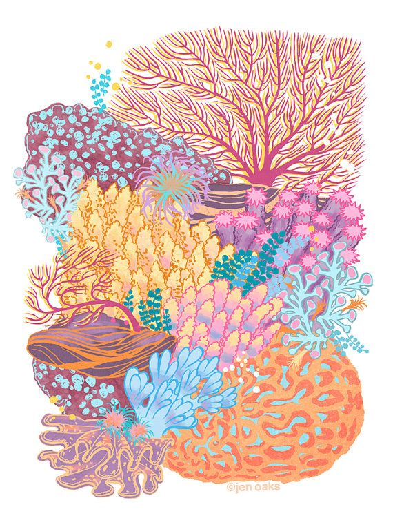 Coral Reef - 9x12 archival print