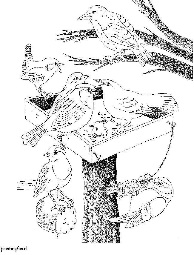 Winter kleurplaat. Vogels worden in de winter gevoerd om te overwinteren ,kleurplaat.