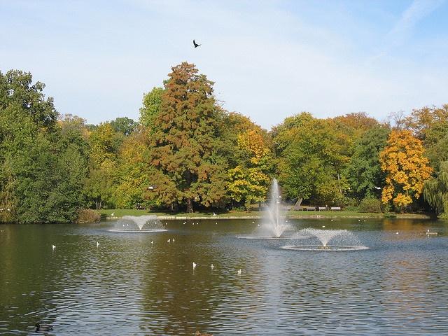 Park Południowy - jeden z najpiękniejszych zakątków Wrocławia.