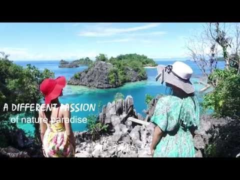 Labengki island tour package snorkeling trip tour pulau labengki island travel