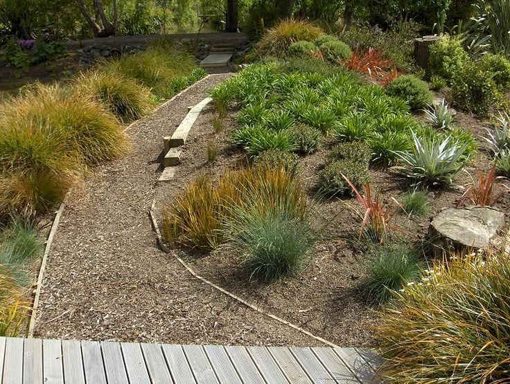 128 best images about new zealand garden on pinterest for New landscaping ideas