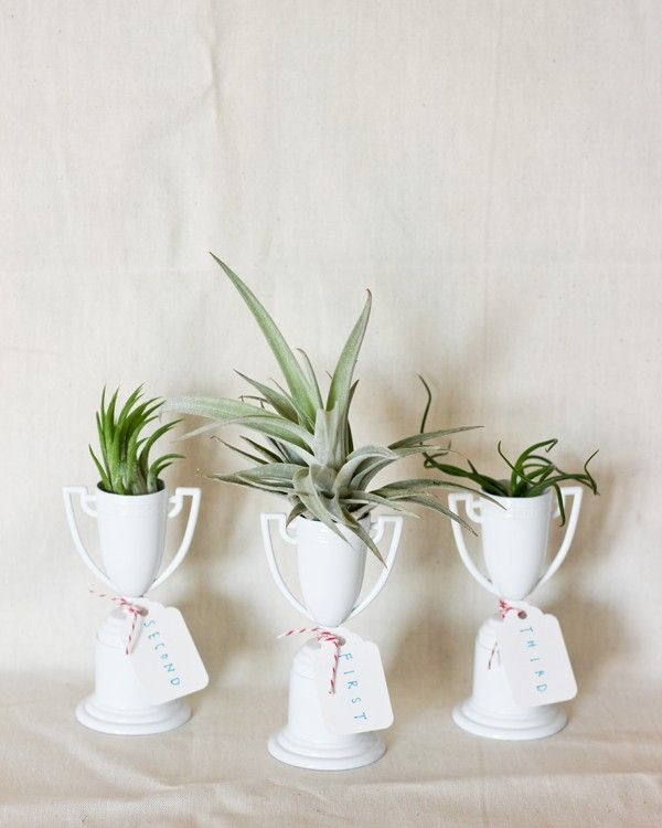 7 ways to repurpose old trophies to show everyone what a winner you are