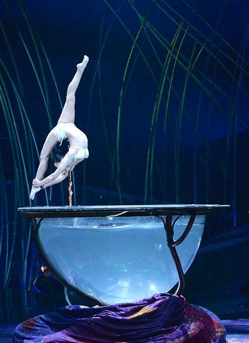Culture Vixen Cirque du Soleil Amaluna 16 Cirque du Soleil: Amaluna travel top articles san francisco travel inspirations