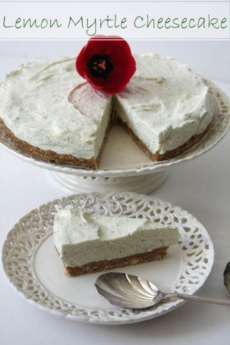 Lemon Myrtle No Bake Cheesecake Slice