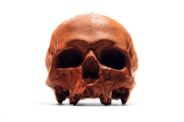 Edible Anatomically Accurate Chocolate Human Skulls