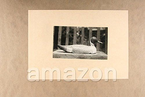 This beautiful vintage collectible Raw Photo 'DUCK DECOY Hunting Equipment' comes from the archive of renowned Culver Pictures Inc in New York which was acquired by MMG Vintage. Claimed to be one of t...