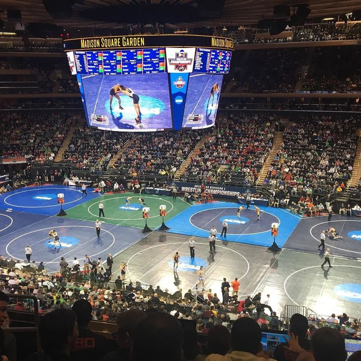 """Made it to MSG for the NCAA Wrestling Show.  Been a few upsets so far. Definitely looking forward to the next few days of action.  71 days: """"What separates a winner from the rest of the pack is not raw talent or physical ability; it is the drive and dedication to work hard every single day and the heart to go after your dream no matter how unattainable others think it is."""" Linda Mastandrea  #MDW16 #marchmatness #ncaawrestling #wrestlenyc #msg #thegarden #madisonsquaregarden #thewrestlingshow #bowtoyoursensei #howbaddoyouwantit #thereisonlyone by johnnymongo"""