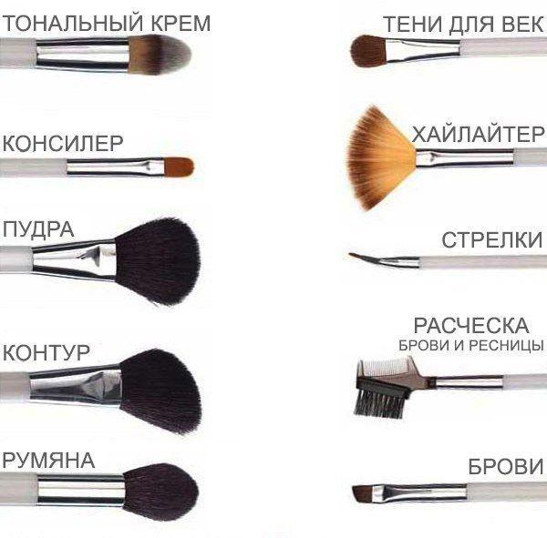Основные кисти для макияжа.