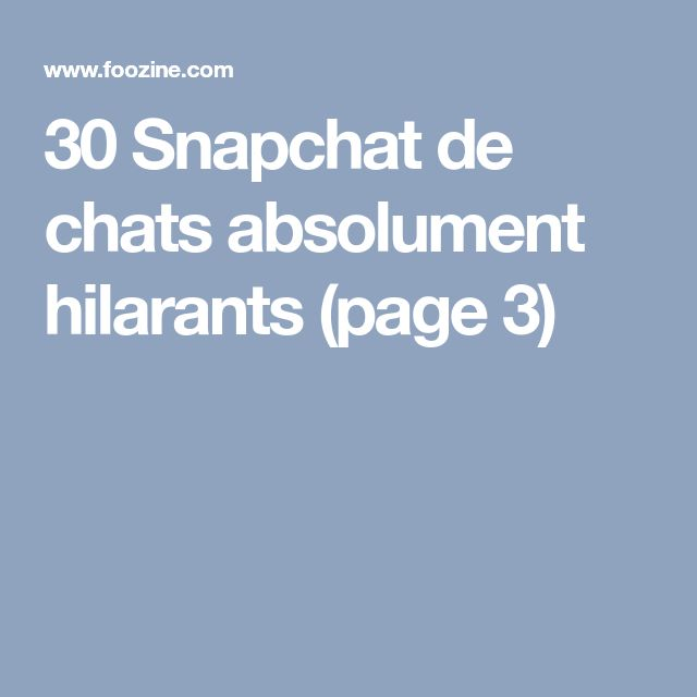 30 Snapchat de chats absolument hilarants (page 3)