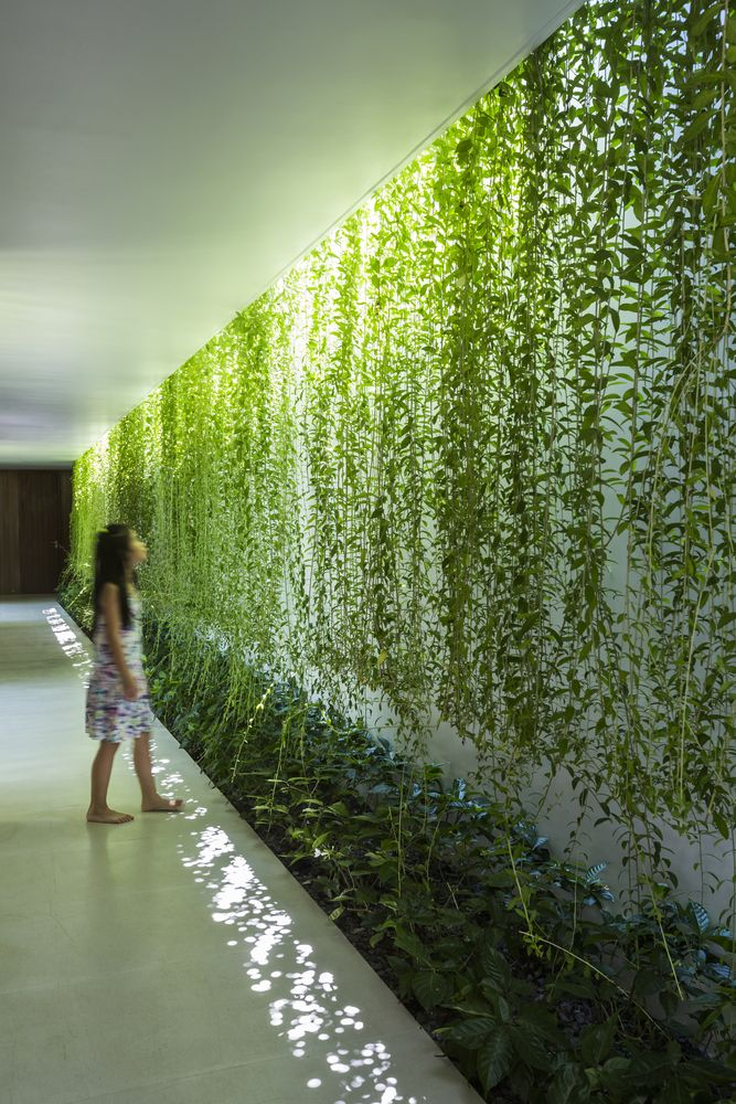 Galeria de Casa Jardim / MIA Design Studio - 2