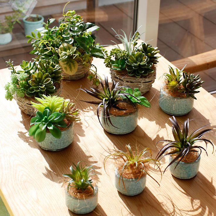 フェくグリーンの多肉植物。いくつか完成しました。器には、白樺のバスケットやファームさんのクラックが入った素敵な陶器のものを使用。造花ドットコム zouka.com