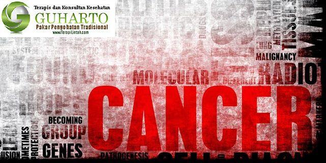 Terapi Kanker Dengan Metode Terapi Lintah http://terapilintah.com/terapi-kanker/