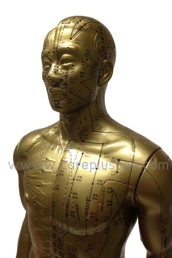 Acupuncture Point Model Golden Copper Human Body Male 33