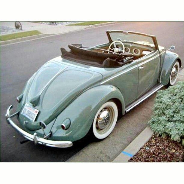 """Volkswagon #vw #beetle #bug"""""""