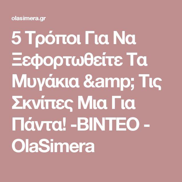 5 Τρόποι Για Να Ξεφορτωθείτε Τα Μυγάκια & Τις Σκνίπες Μια Για Πάντα! -ΒΙΝΤΕΟ - OlaSimera