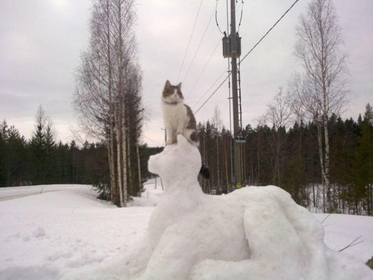 Snowman Big Cat