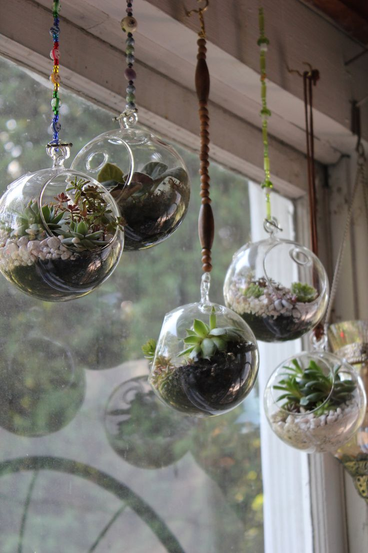 25 best ideas about hanging glass terrarium on pinterest. Black Bedroom Furniture Sets. Home Design Ideas