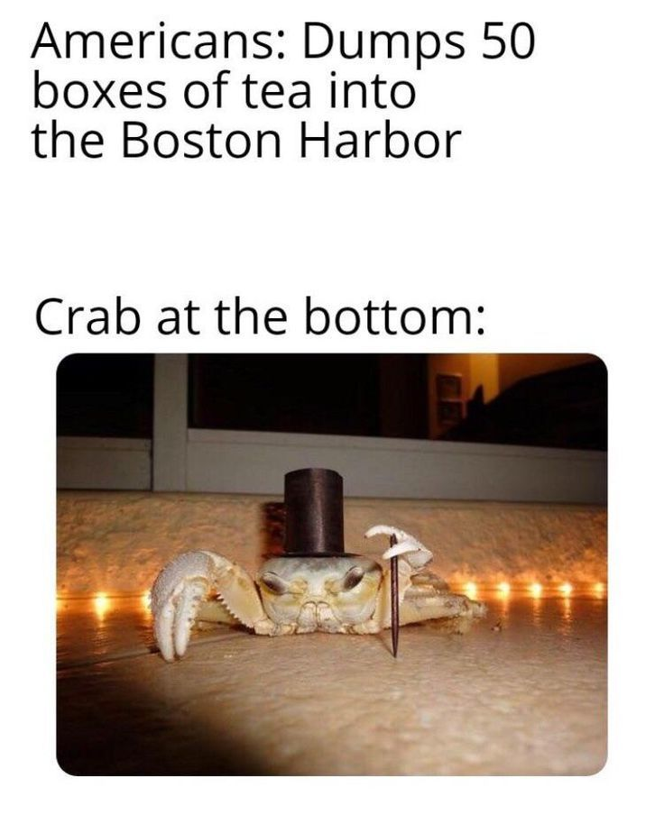 Memes 2019 Memes Reddit Memes Funny Memes About Love Memes To Draw Memes About L Love Memes Funny Reddit Memes Funny Relatable Memes