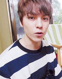 gif, hansol vernon chwe, and Seventeen image