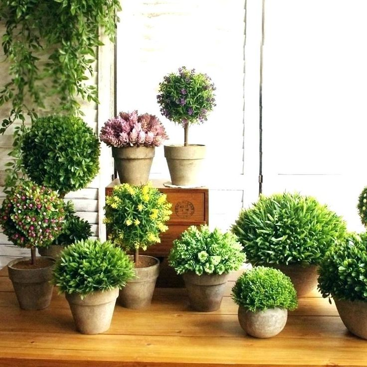 Fake Potted Trees For Indoors Small indoor plants