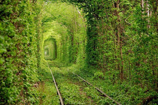 Tunnel des amoureux