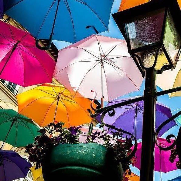 """""""E é amar-te, assim, perdidamente... É seres alma, e cor, e vida em mim E dizê-lo cantando a toda a gente!"""" Foto: Joana Pinto www.agitagueda.com  __ #agitagueda #agitagueda2016 #agitaguedaartfestival #agueda #streetart #festival #urbanart #umbrellaskyproject"""
