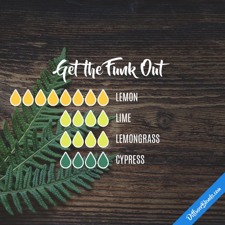 Get the Funk Out — Essential Oil Diffuser Blend