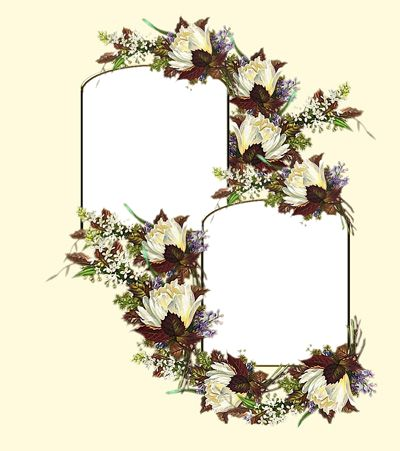 double frame on yellow with white flowers - Double Frame