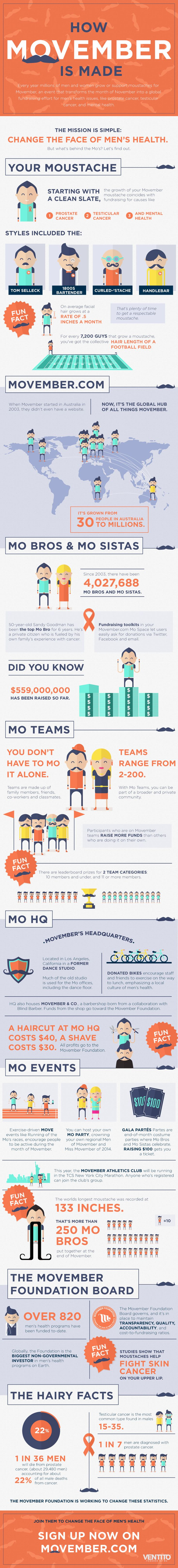 How Movember is Made #infographic #Movember #Cancer #Mustaches