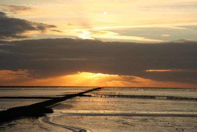 Waddenzee - The Netherlands
