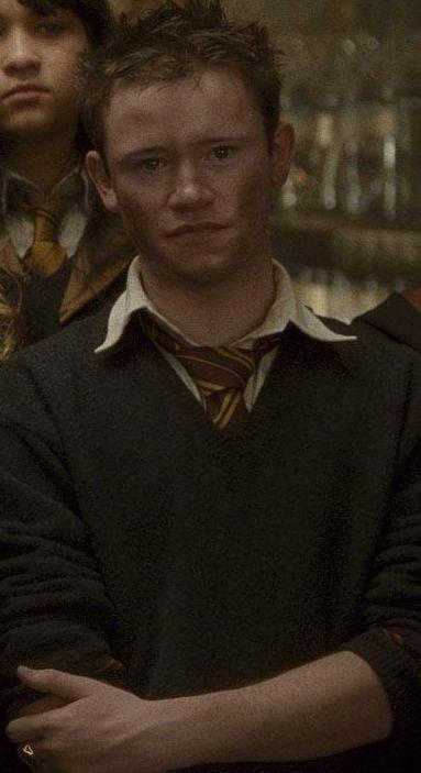 Devon Murray as Seamus Finnigan.