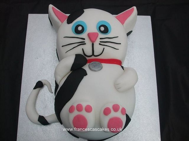birthday cat cake- never know when you'll need this