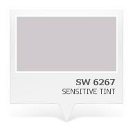 SW 6267 - Sensitive Tint