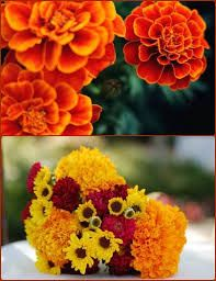 marigold wedding flowers - yellow orange and red