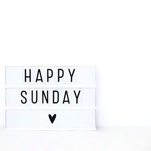 #SUNDAY FUNDAY Bring your fun sayings clever phrases and cute quotes to life…