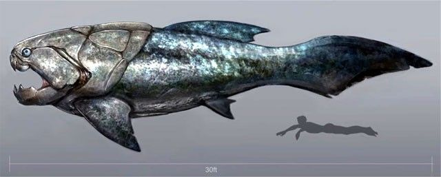 Top 10 Terrifying Prehistoric Sea Monsters - Dunkleosteus