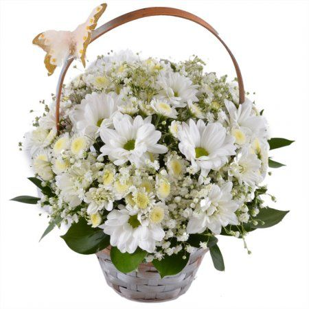 Легкая, как утренний туман, композиция из белых цветов в корзиночке. В ней собраны белые ромашковые хризантемы и хрупкие веточки гипсофилы, окутавшие цветы полупрозрачной дымкой.