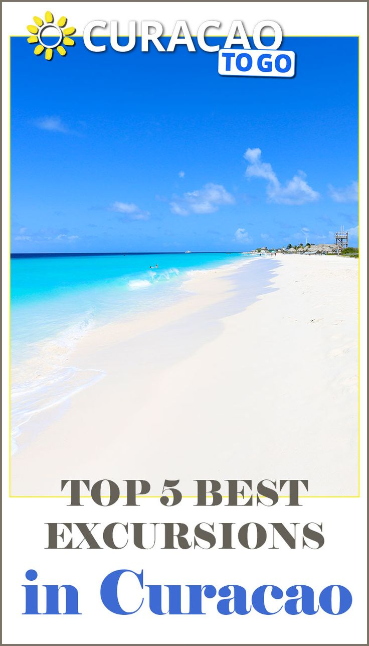 Top 5 Best Excursions In Curacao Curacao Tips Caribbean Todo  Things To