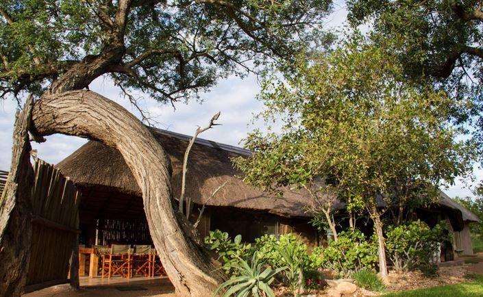 #Africaonfoot #Krugerlodge #Klaserie