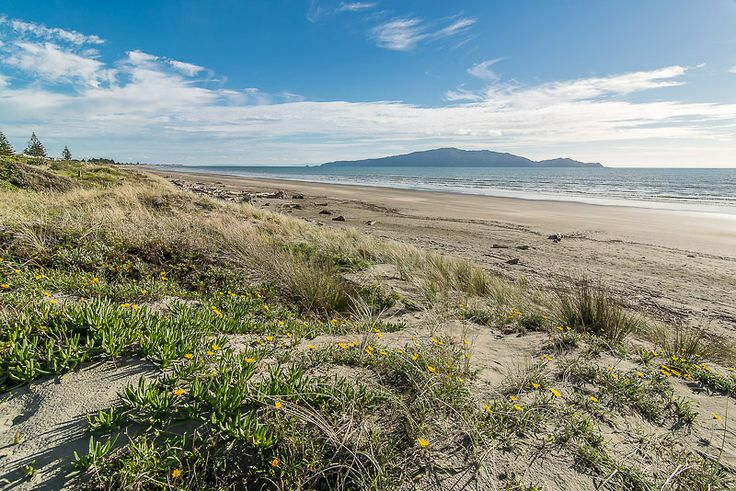 Kapiti Island from Waikanae Beach near Olliver Grove, Kapiti Coast, New Zealand . Ref No: NZNK169198