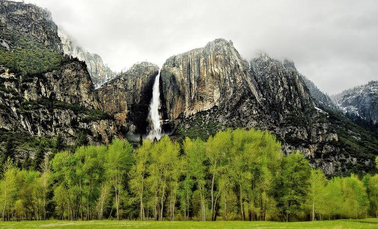 https://flic.kr/p/tPfv12 | Lush green landscape of Yosemite Valley | Lush green…